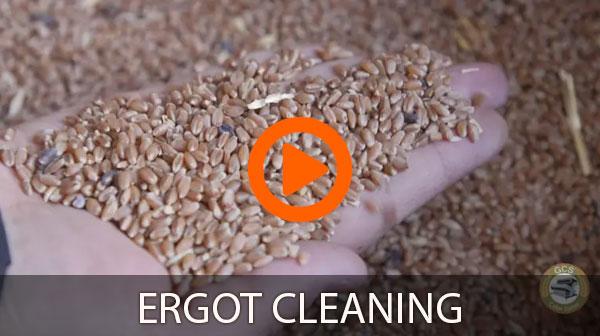 ergot cleaning