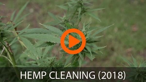 hemp cleaning