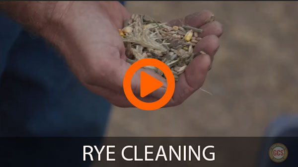 Rye Cleaning
